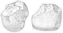 Чоппер - одно из первых орудий человека